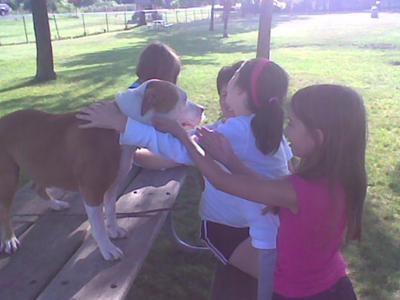 Anna playing with the children at the dog park