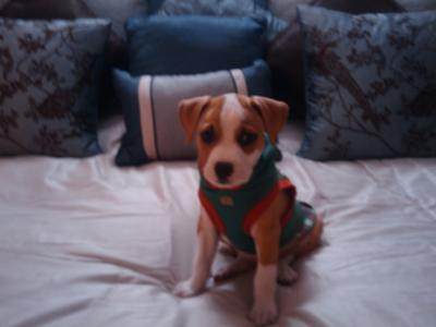 this was her Xmas 2009