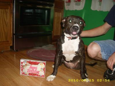 Ki Ki and her Birthday Cake