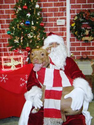 Mollie and Santa
