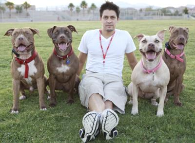 peace love and pit bulls .org
