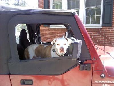 My jeep!  YAY!!!!!