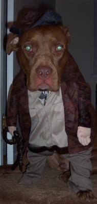 Tyson McLovin as Indiana Jones